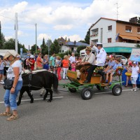 24-07-2014-memmingen-kinderfestumzug-groll-new-facts-eu (101)