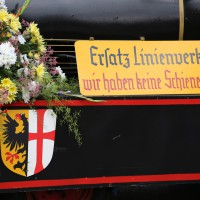 24-07-2014-memmingen-kinderfestumzug-groll-new-facts-eu (215)