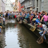 26-07-2014-memmingen-fischertag-fischen-wiegen-koenigsforelle-peta-poeppel-new-facts-eu20140726_0223