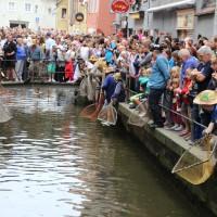 26-07-2014-memmingen-fischertag-fischen-wiegen-koenigsforelle-peta-poeppel-new-facts-eu20140726_0227
