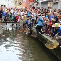 26-07-2014-memmingen-fischertag-fischen-wiegen-koenigsforelle-peta-poeppel-new-facts-eu20140726_0228