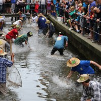 26-07-2014-memmingen-fischertag-fischen-wiegen-koenigsforelle-peta-poeppel-new-facts-eu20140726_0230