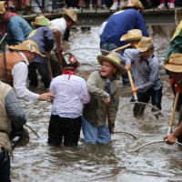 26-07-2014-memmingen-fischertag-fischen-wiegen-koenigsforelle-peta-poeppel-new-facts-eu20140726_0315