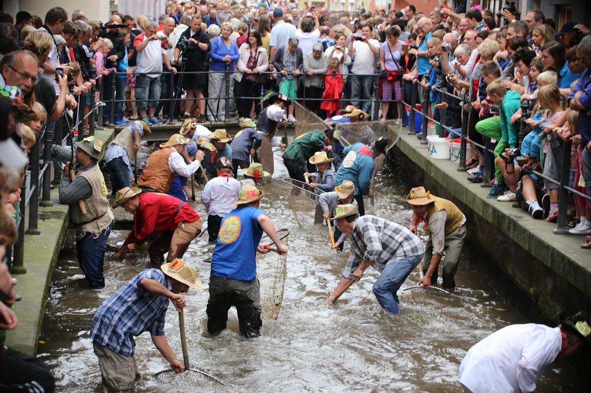 26-07-2014-memmingen-fischertag-fischen-wiegen-koenigsforelle-peta-poeppel-new-facts-eu20140726_0319