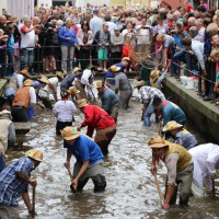 26-07-2014-memmingen-fischertag-fischen-wiegen-koenigsforelle-peta-poeppel-new-facts-eu20140726_0325