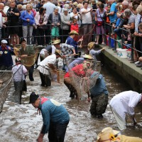 26-07-2014-memmingen-fischertag-fischen-wiegen-koenigsforelle-peta-poeppel-new-facts-eu20140726_0328