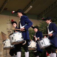 26-07-2014-memmingen-fischertag-kroenungsfruehschoppen-stadion-fischerkoenig-poeppel-new-facts-eu20140726_0166