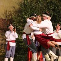 26-07-2014-memmingen-fischertag-kroenungsfruehschoppen-stadion-fischerkoenig-poeppel-new-facts-eu20140726_0419