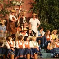 26-07-2014-memmingen-fischertag-kroenungsfruehschoppen-stadion-fischerkoenig-poeppel-new-facts-eu20140726_0551