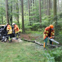 27-07-2014-biberach-gutenzell-huerbel-pkw-baum-feuerwehr-new-facts-eu (8)