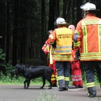 27-07-2014-biberach-gutenzell-huerbel-pkw-baum-feuerwehr-new-facts-eu (9)