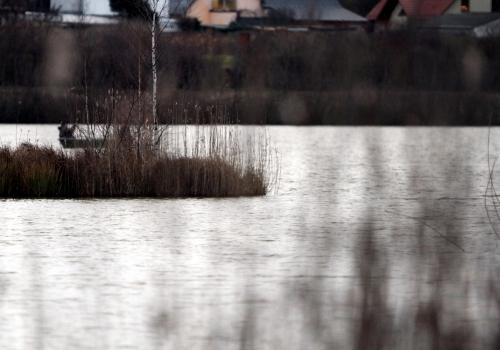 Heidesee in Halle, über dts Nachrichtenagentur