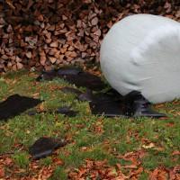 21.10.2014-Unwetter-Dach-abgedeckt-Feuerwehr-Bringezu-New-facts  (23)
