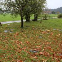 21.10.2014-Unwetter-Dach-abgedeckt-Feuerwehr-Bringezu-New-facts  (43)