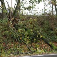 21.10.2014-Unwetter-Dach-abgedeckt-Feuerwehr-Bringezu-New-facts  (5)