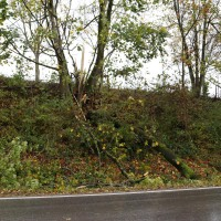 21.10.2014-Unwetter-Dach-abgedeckt-Feuerwehr-Bringezu-New-facts  (6)