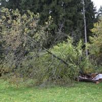 21.10.2014-Unwetter-Dach-abgedeckt-Feuerwehr-Bringezu-New-facts  (8)