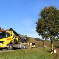 Unfall-Baum-PKW-OAL16-Biessenhofen-Kaufbeuren-frontal-18.10 (12)
