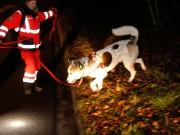 03-12-0214-neu-ulm-illertissen-vermisstensuche-polizei-feuerwehr-rettungshunde-brk-asb-wis-new-facts-eu20141204_0009
