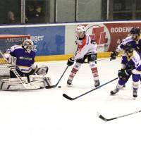 15-12-2014-eishockey-indians-ecdc-memmingen-waldkraiburg-sieg-fuchs-new-facts-eu0027