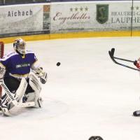15-12-2014-eishockey-indians-ecdc-memmingen-waldkraiburg-sieg-fuchs-new-facts-eu0038