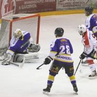 15-12-2014-eishockey-indians-ecdc-memmingen-waldkraiburg-sieg-fuchs-new-facts-eu0066