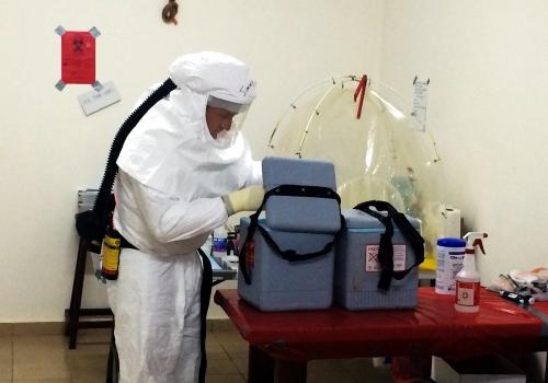 Ebola-Untersuchung, über dts Nachrichtenagentur