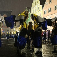 17-01-15_Memmingen_Fasnet_Fasching_Nachtumzug_Stadtbachhexen_Poeppel_new-facts-eu0155