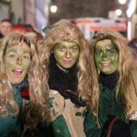 17-01-15_Memmingen_Fasnet_Fasching_Nachtumzug_Stadtbachhexen_Poeppel_new-facts-eu0245