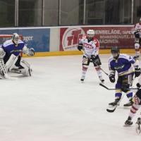 23-01-15_Eishockey_Indians_ECDC-Memmingen_Waldkraiburg_Match_Fuchs_new-facts-eu0047