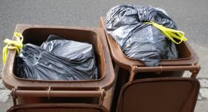 Plastiktüten gehören nicht in die Biotonne - Foto: Landratsamt Günzburg
