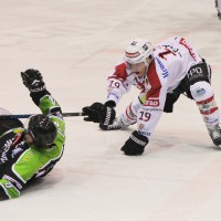 01-02-2015_Eishockey_Memmingen_Indians-ECDC_ Hoechstadt_match_Fuchs_new-facts-eu0038