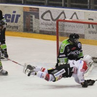 01-02-2015_Eishockey_Memmingen_Indians-ECDC_ Hoechstadt_match_Fuchs_new-facts-eu0045