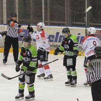 01-02-2015_Eishockey_Memmingen_Indians-ECDC_ Hoechstadt_match_Fuchs_new-facts-eu0049