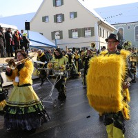 07-02-15_Narrensprung-Legau_Loewen-77_Poeppel_new-facts-eu0214