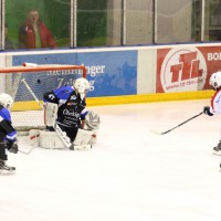 28-02-15_eishockey_memmingen_play-off_indians_ecdc_landsberg_fuchs_new-facts-eu0060