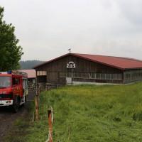 27.05.2015-Marktoberdorf-Burk-Feuer-Pferdestall-Reiterhof-Feuerwehr-alle Tiere gerettet-Bringezu-Ostallgäu (14)