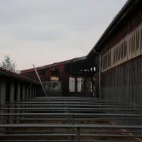 27.05.2015-Marktoberdorf-Burk-Feuer-Pferdestall-Reiterhof-Feuerwehr-alle Tiere gerettet-Bringezu-Ostallgäu (20)