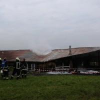 27.05.2015-Marktoberdorf-Burk-Feuer-Pferdestall-Reiterhof-Feuerwehr-alle Tiere gerettet-Bringezu-Ostallgäu (8)