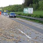 A7-km870-FRiSüd-Kartoffeln-07-05-15-025