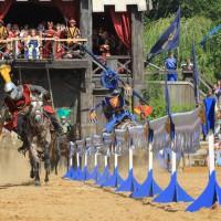 12-07-2015_BY-Kaltenberg-Festspiele_2015_Tunier_Kuehnl_new-facts-eu0145