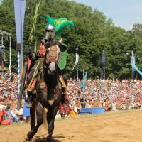 12-07-2015_BY-Kaltenberg-Festspiele_2015_Tunier_Kuehnl_new-facts-eu0150