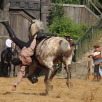 12-07-2015_BY-Kaltenberg-Festspiele_2015_Tunier_Kuehnl_new-facts-eu0201