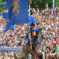 12-07-2015_BY-Kaltenberg-Festspiele_2015_Tunier_Kuehnl_new-facts-eu0262