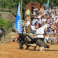 12-07-2015_BY-Kaltenberg-Festspiele_2015_Tunier_Kuehnl_new-facts-eu0268