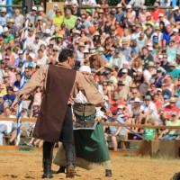 12-07-2015_BY-Kaltenberg-Festspiele_2015_Tunier_Kuehnl_new-facts-eu0270