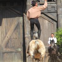 12-07-2015_BY-Kaltenberg-Festspiele_2015_Tunier_Kuehnl_new-facts-eu0271