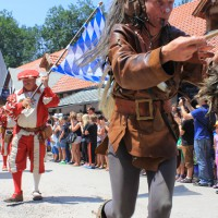 12-07-2015_BY-Kaltenberg-Festspiele_2015_Umzug_Kuehnl_new-facts-eu0325