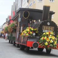 23-07-2015_Memminger-Kinderfest-2015_Umzug_Kuehnl_new-facts-eu0108