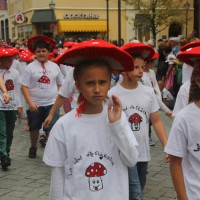 23-07-2015_Memminger-Kinderfest-2015_Umzug_Kuehnl_new-facts-eu0154